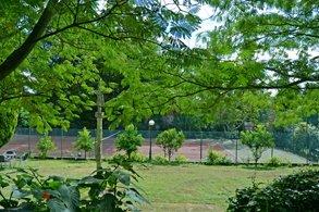Instalaciones deportivas en el Campus